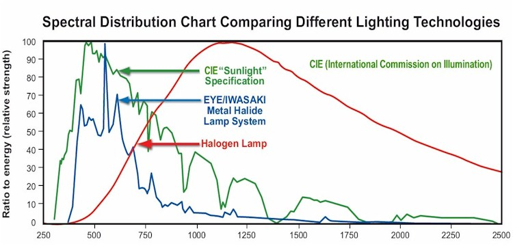 Spectra Metal Halide vs sunlight and Halogen lamps